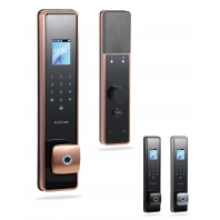 China Face Recognition Automatic Intelligent Password Swipe Fingerprint Door Lock factory